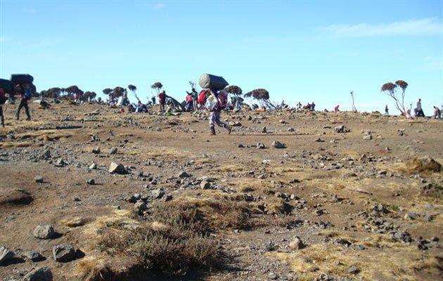 Dage - kilimanjaro trek, machame ruten