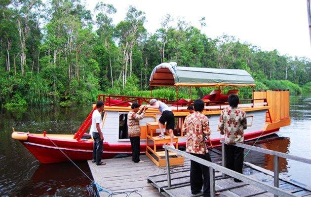 Borneo - Kalimantan - I orangutangens fodspor | Jysk Rejsebureau