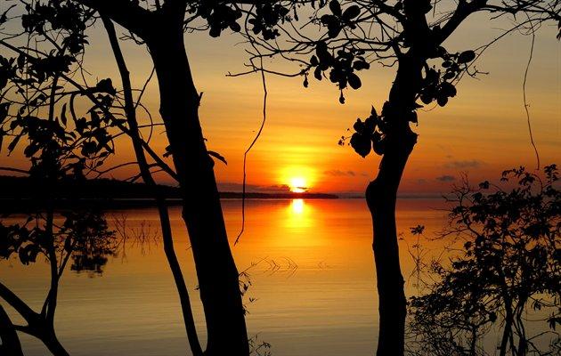 Oplevelser i Amazonas regnskoven | Jysk Rejsebureau
