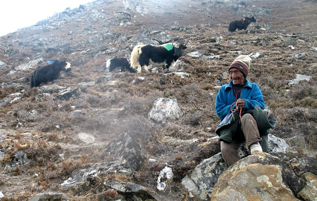 Everest Base Camp Trek 7,Nepal