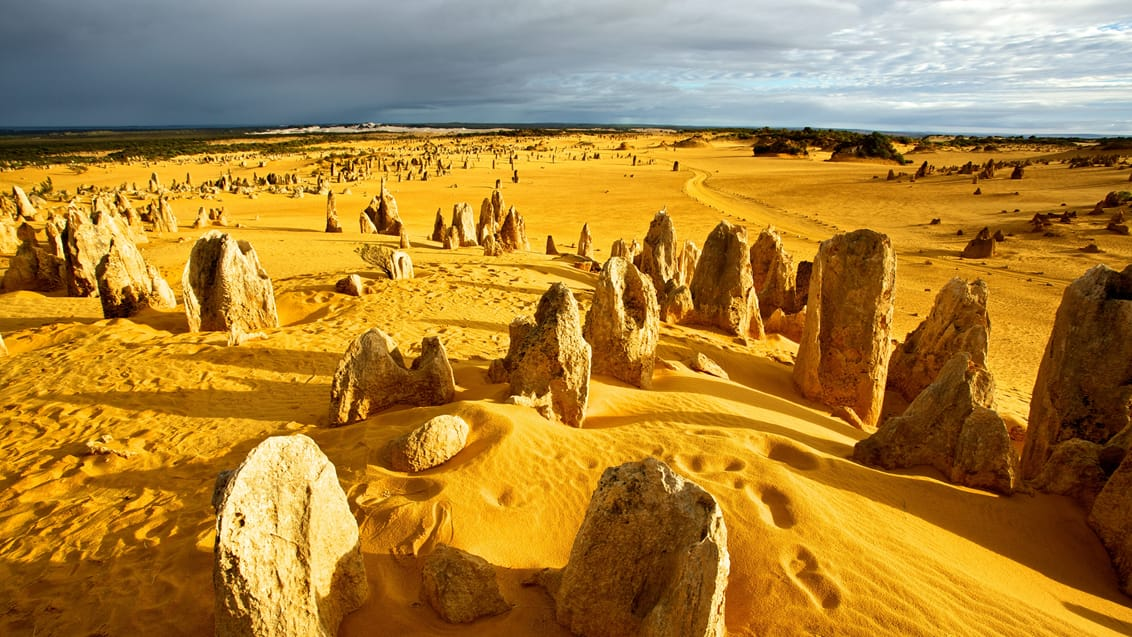 Pinnacles Desert, nord for Perth