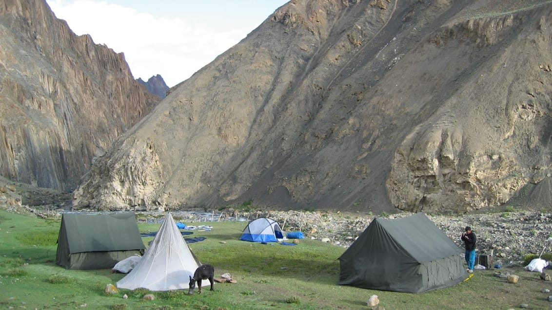 Telt camp, Markha Valley Trek, Indien