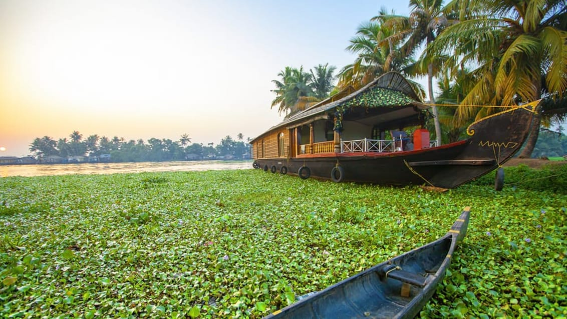 Backwater i Alleppey