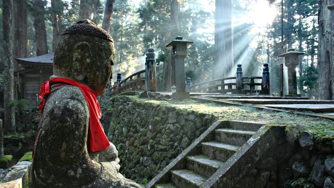 Mt. Koya er centrum for Shingon buddhismen, en vigtig buddhistisk sekt, som blev introduceret i Japan i år 805