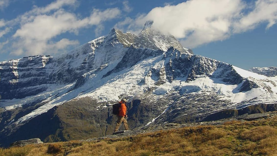 Mt. Aspiring, New Zealand
