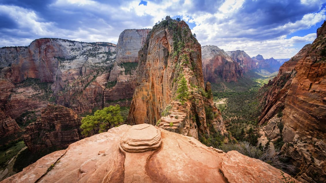 Tag på vandretur til Angels Landing i Zion National Park