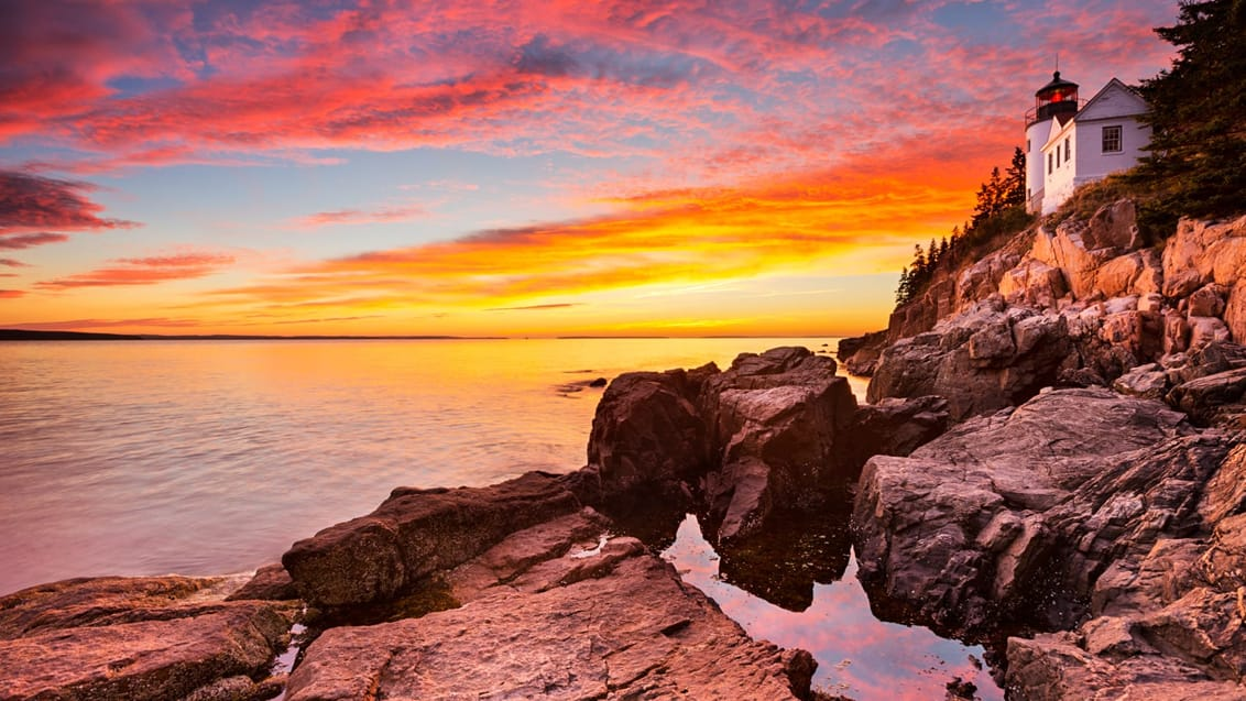 Bass Harbor fyret i Acadia National Park