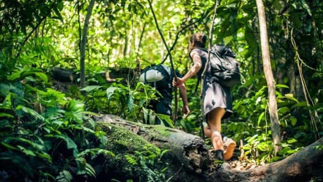 Jungle trekking, Bukit Lawang, Sumatra, Indonesien