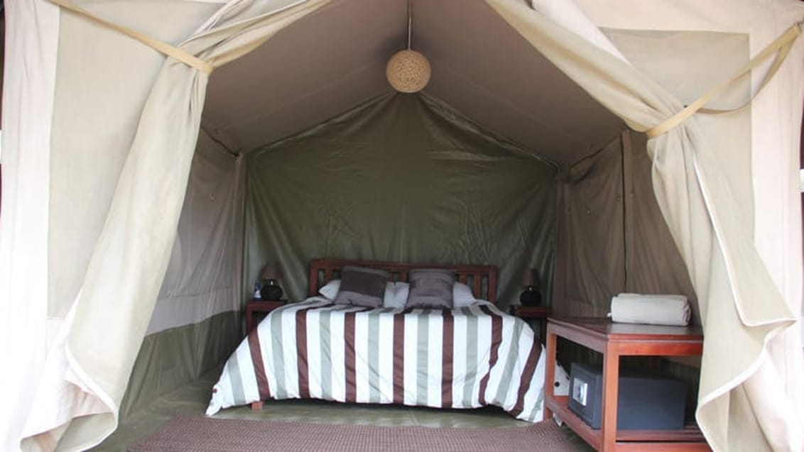 Wildebeest Eco Camp, Nairobi, Kenya