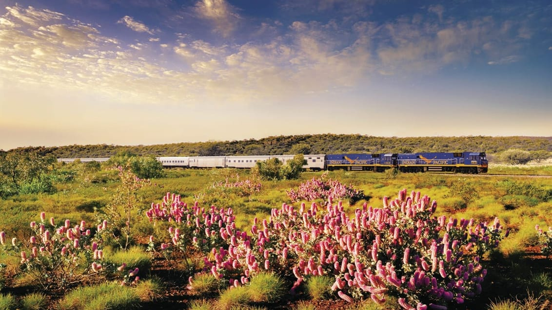 Indian Pacific, fra Sydney til Adelaide og Perth